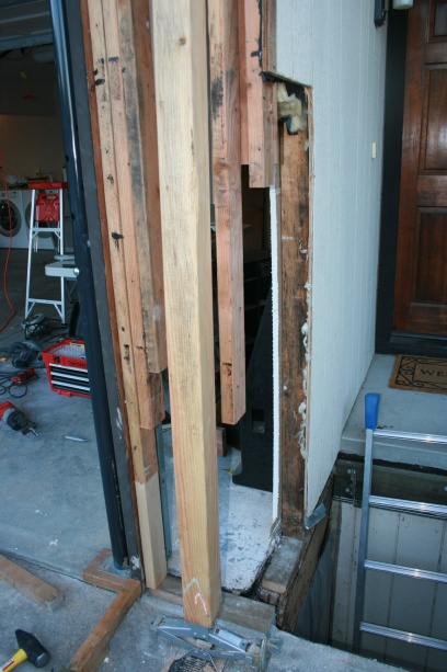 Dry rot project-img_3596.jpg
