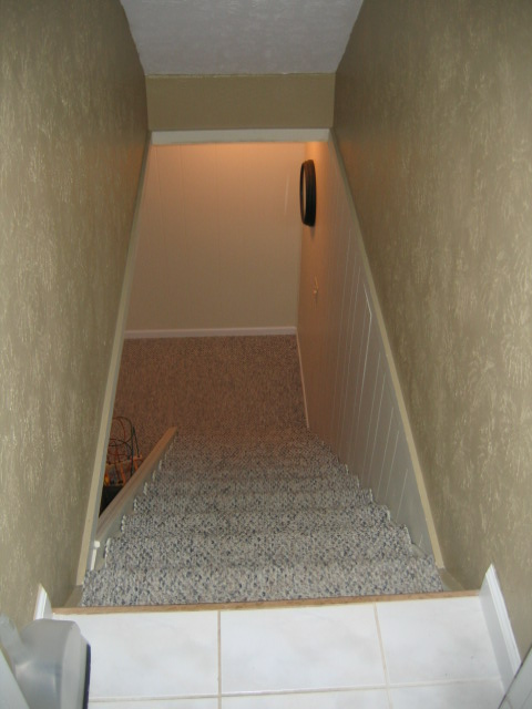 Open Stairs in Basement-img_3606.jpg