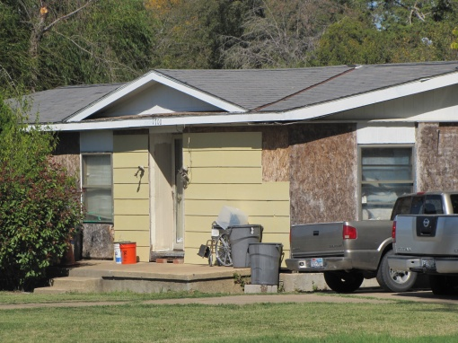 We don't need no siding-img_3621.jpg