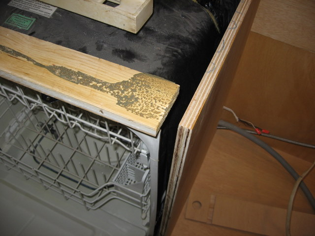 Unintended kitchen remodel-img_3885.jpg