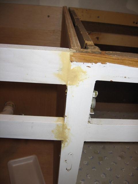 Unintended kitchen remodel-img_3898.jpg