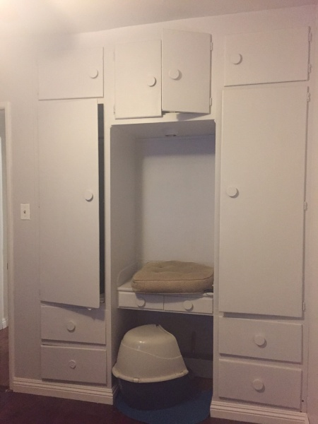 Need help with existing built-ins-img_4086.jpg