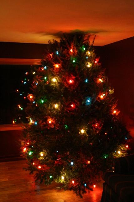 Christmas Light - Did I win?-img_4594.jpg