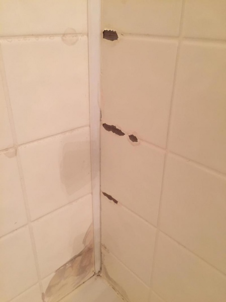 What Material Are These Shower Walls-img_4734_1501905459088.jpg