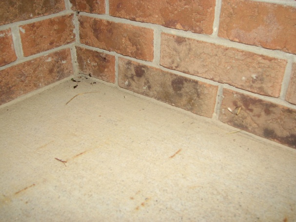 Can Ground Water Wick Up A Foundation Wall?-img_4746.jpg