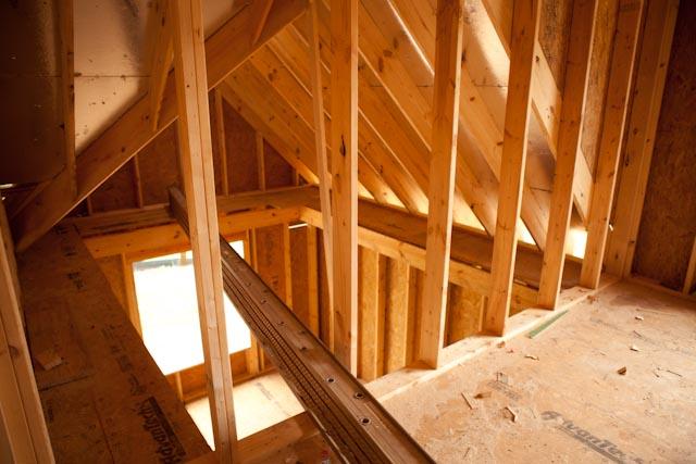 Wavy roof! Need opinions/advice-img_5114.jpg