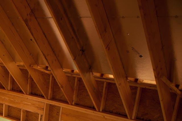 Wavy roof! Need opinions/advice-img_5124.jpg