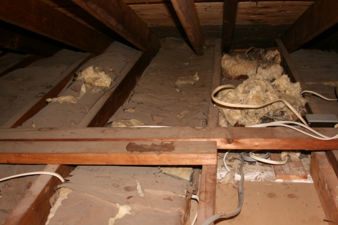 Newbie needs help insulating attic-img_5276.jpg