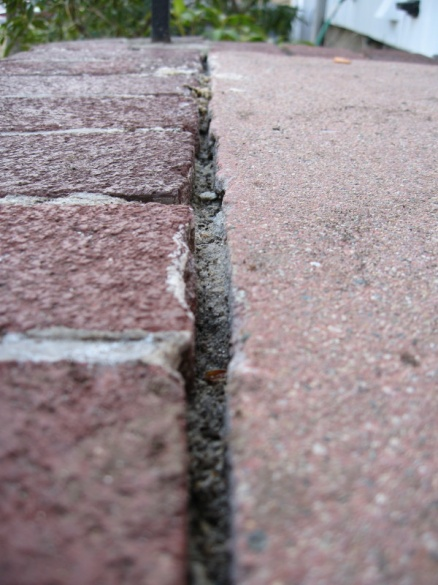 Repointing brick on front steps-img_5551.jpg