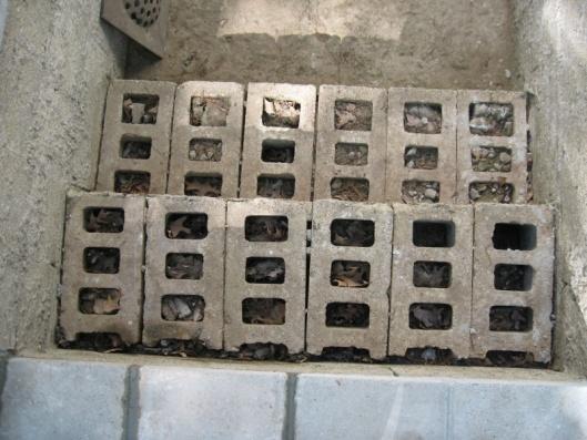 Rebuild concrete steps leading to basement-img_5591.jpg
