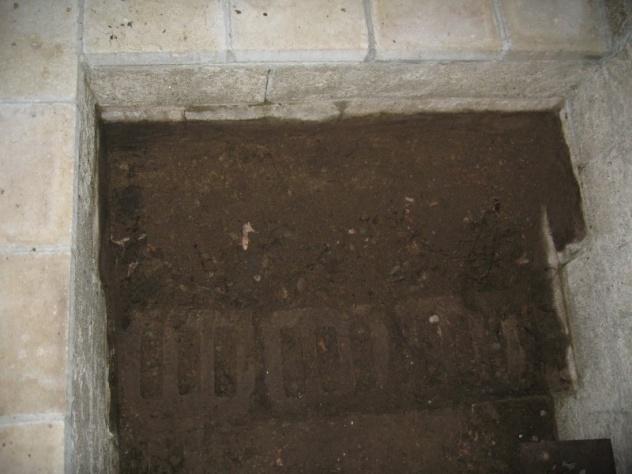 Rebuild concrete steps leading to basement-img_5688.jpg