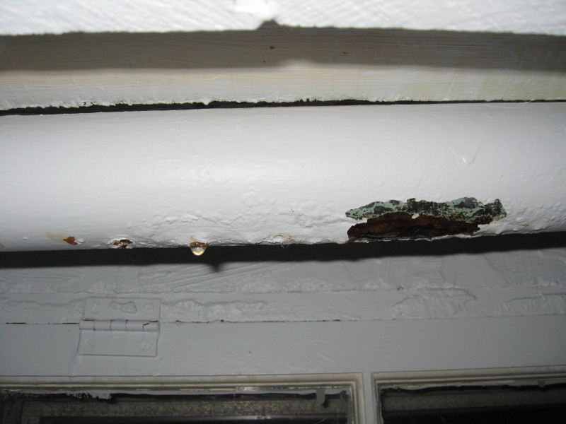 Pipe just started leaking-img_5817.jpg