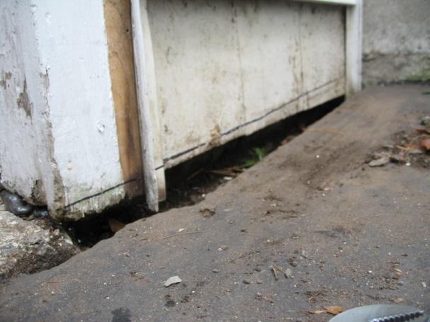 Water near foundation-img_5906.jpg