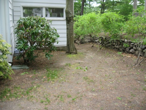 Building a french drain-img_6115.jpg