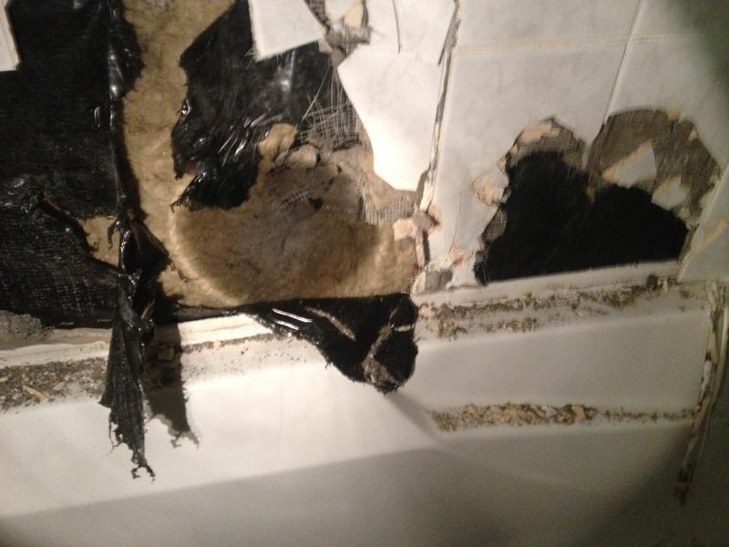 Advice on Bathroom Remodel-img_6237.jpg