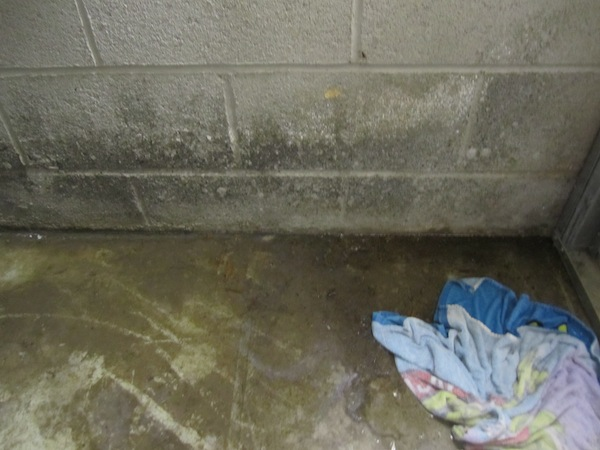 rain water basement leak-img_6254.jpg