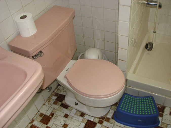 how to pick the right toilet for a tight space?-img_6374.jpg