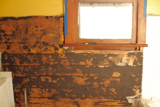 Ideas for covering wood plank walls-img_6471.jpg