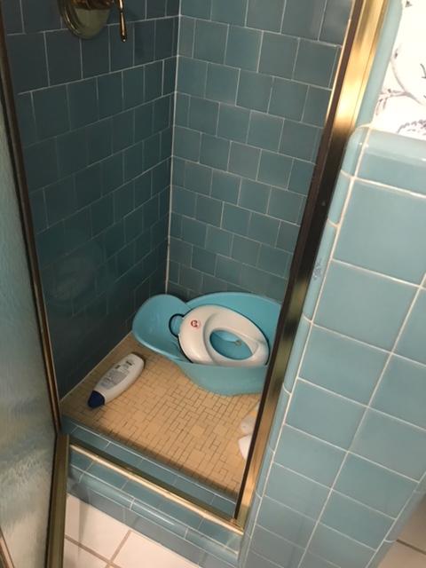 Bathroom Remodel Help Needed!! - Kitchen & Bath Remodeling ...