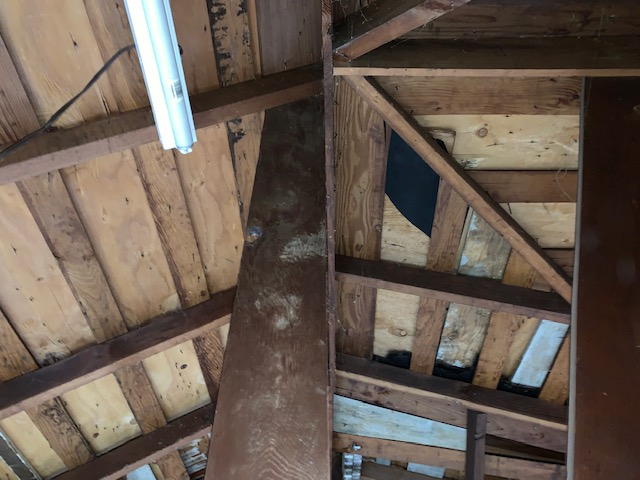 Garage Rafter Supports-img_7408.jpg
