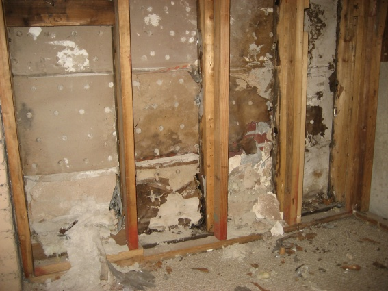 Drywall Identification?  Asbestos?-img_7453.jpg