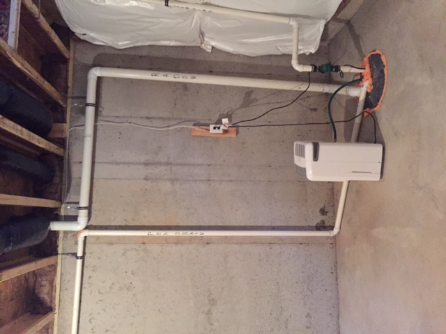 Pen drain pipe in basement-img_7571.jpg