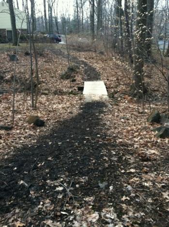 Upgrading Walkway with Wood Chips?-img_7621.jpg