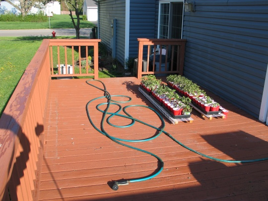 Building  Free standing Pergola over existing deck, need some help...-img_7660.jpg