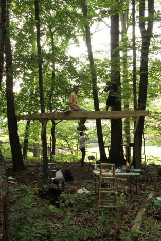 Treehouse 1/2 inch flooring-img_8277.jpg