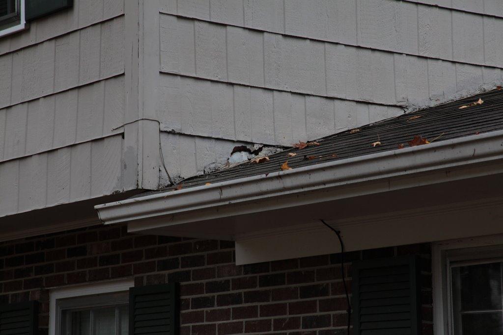 Hardboard damage - How to repair ?-img_8281.jpg