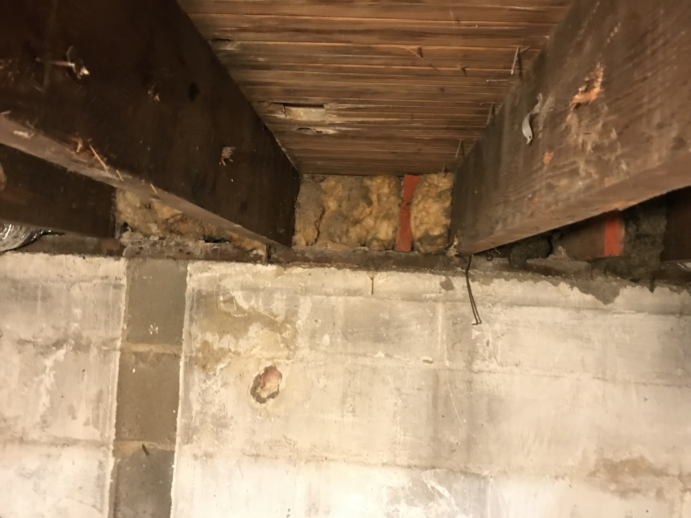 Insulating space betweek joists that run from crawl to basement-img_8305.jpg