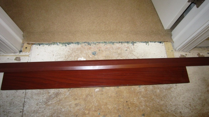 Wood to Carpet with Reducer-img_8401.jpg