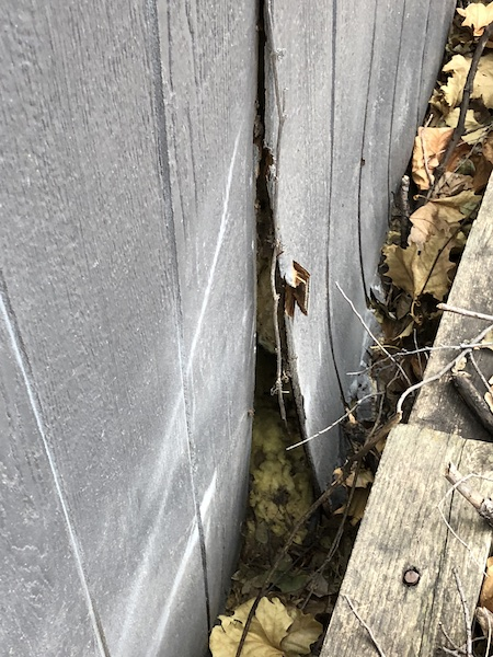 Keep Pests Out Of Shed Siding Peeling Back Roofing
