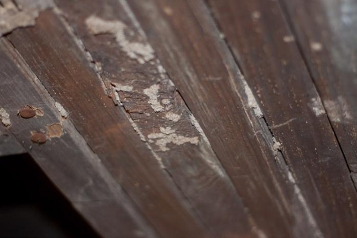 Girder termite damage...HELP!-img_9438.jpg