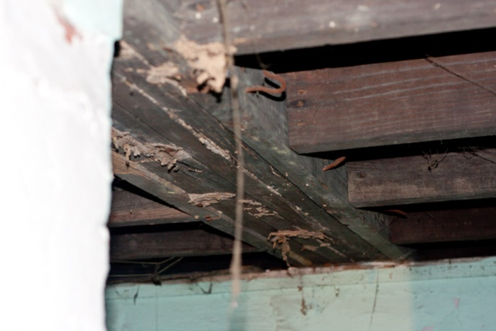 Girder termite damage...HELP!-img_9442.jpg