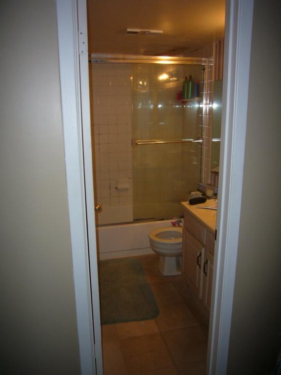 Condo Master Bathroom Reno (demo, bathtub to shower conversion, flooring)-import-004.jpg