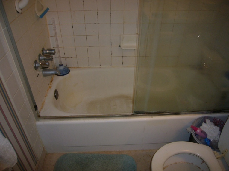 Condo Master Bathroom Reno (demo, bathtub to shower conversion, flooring)-import-006.jpg