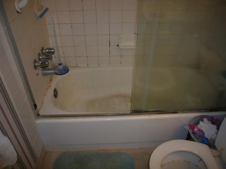 Condo Master Bathroom Reno (demo, bathtub to shower conversion, flooring)-import-006.jpg