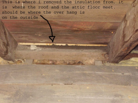 How can I install a Soffit?? pics attached-inside-attic-copy.jpg