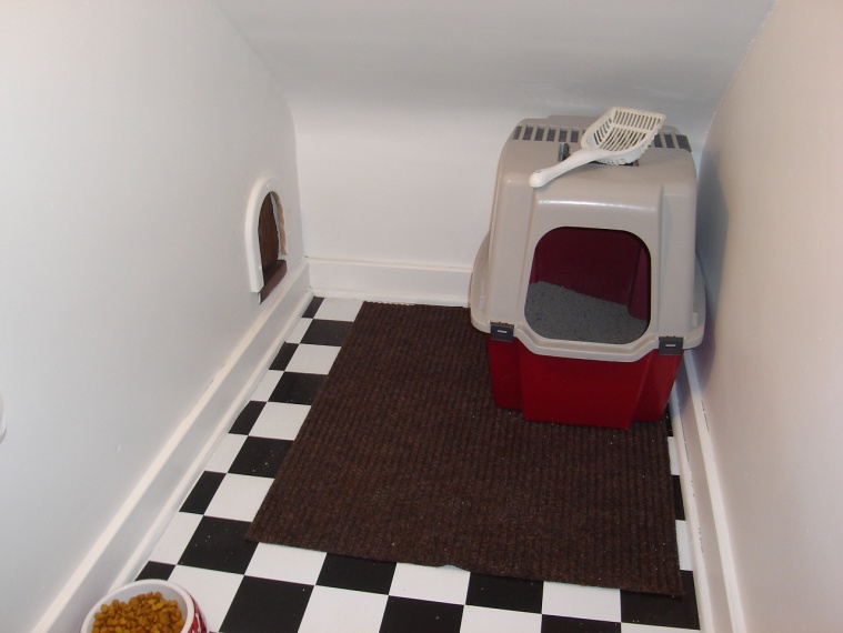 Cold room under stairs (dirt floor) questions with pics-insidecathouse-1280x960-.jpg
