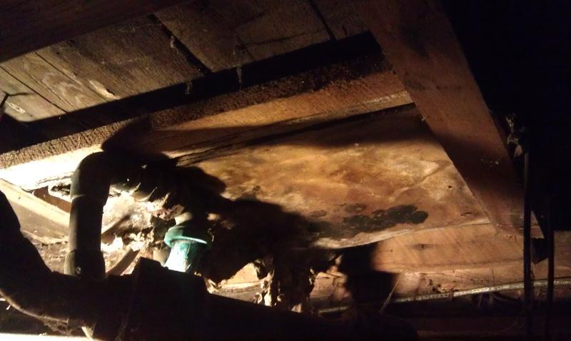 Need help identifying insulation-insulation-under-tub-all.jpg