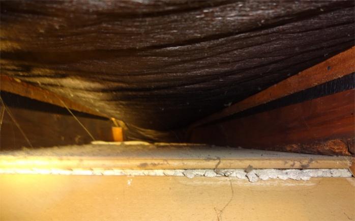 Insulating kneewalls vs roof in 1929 house-insulationuptoroof.jpg
