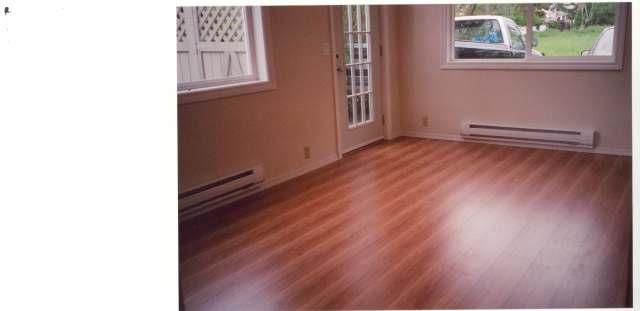From Carpet to laminent?-jeanbrucerenofloor.jpg
