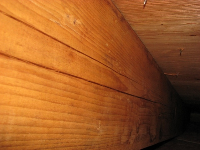Rafter Slits ???  Probably not dangerous..-joist2.jpg