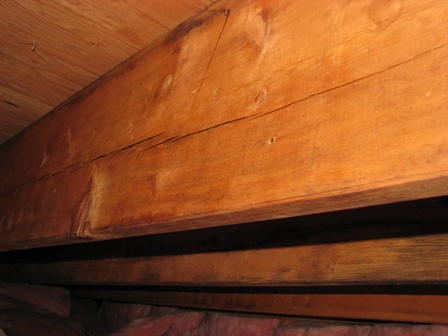 Rafter Slits ???  Probably not dangerous..-joist4.jpg