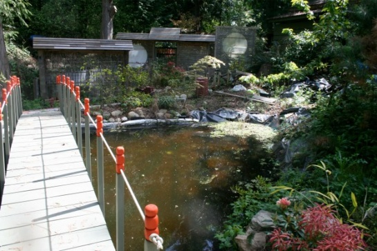 My Summer Pond Build-jp1.jpg