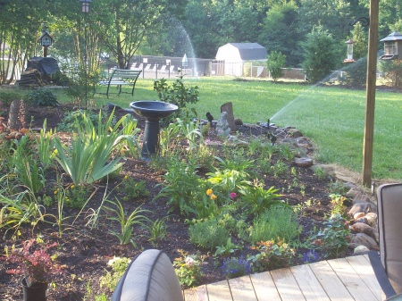 My Yard Is Ugly And I Donu0027t Know An Easy Way To Fix It