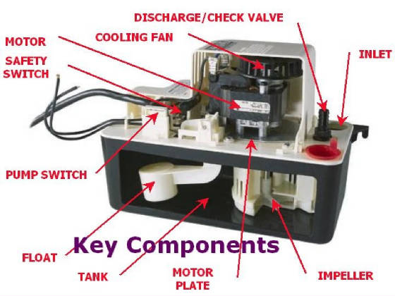 Water under my furnace-keycomponents.jpg.w560h420.jpg