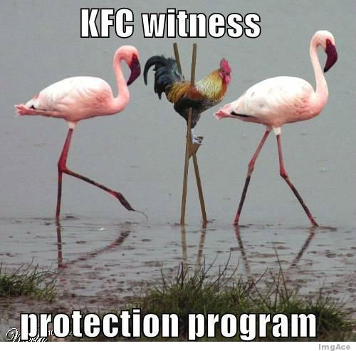 Goofy Pictures, anyone?-kfc-witness-protection-program.jpg