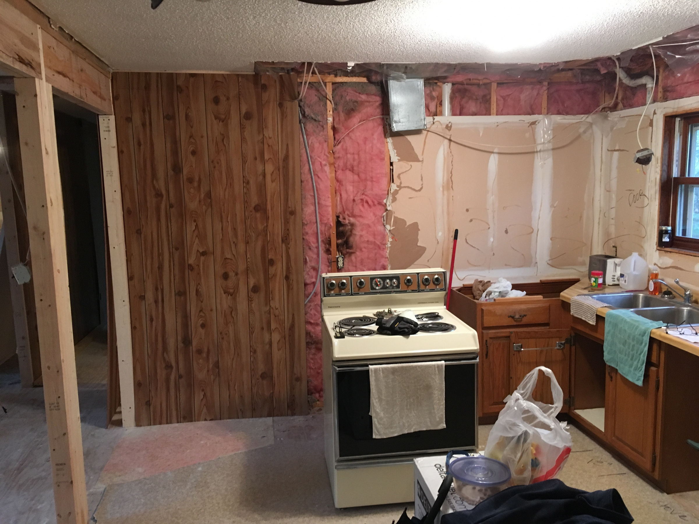 My project---my last home.-kitchen-extension.jpg